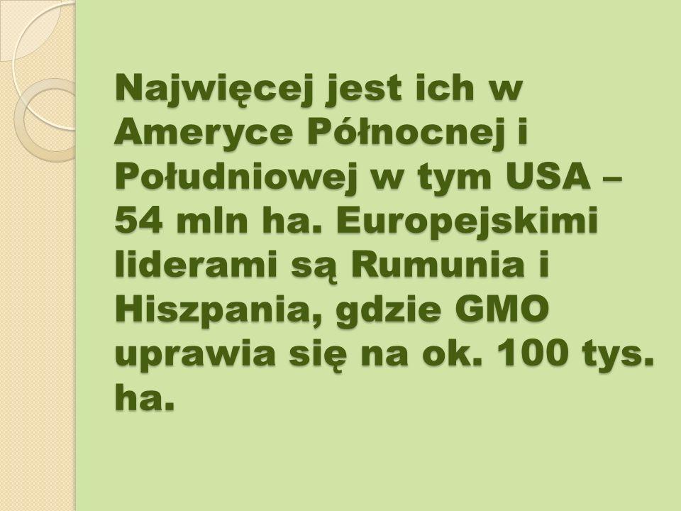 Najwięcej jest ich w Ameryce Północnej i Południowej w tym USA – 54 mln ha. Europejskimi liderami są Rumunia i Hiszpania, gdzie GMO uprawia się na ok.