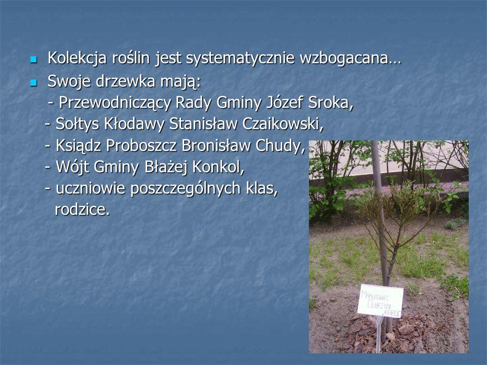 Kolekcja roślin jest systematycznie wzbogacana… Kolekcja roślin jest systematycznie wzbogacana… Swoje drzewka mają: Swoje drzewka mają: - Przewodniczący Rady Gminy Józef Sroka, - Sołtys Kłodawy Stanisław Czaikowski, - Sołtys Kłodawy Stanisław Czaikowski, - Ksiądz Proboszcz Bronisław Chudy, - Ksiądz Proboszcz Bronisław Chudy, - Wójt Gminy Błażej Konkol, - Wójt Gminy Błażej Konkol, - uczniowie poszczególnych klas, - uczniowie poszczególnych klas, rodzice.