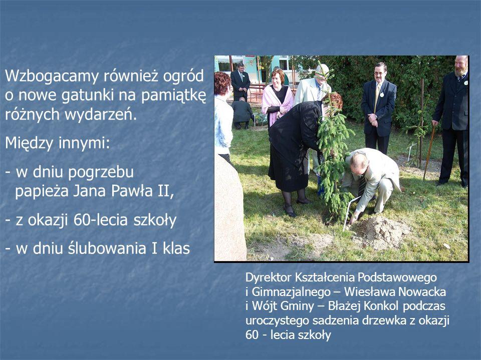Dyrektor Kształcenia Podstawowego i Gimnazjalnego – Wiesława Nowacka i Wójt Gminy – Błażej Konkol podczas uroczystego sadzenia drzewka z okazji 60 - lecia szkoły Wzbogacamy również ogród o nowe gatunki na pamiątkę różnych wydarzeń.