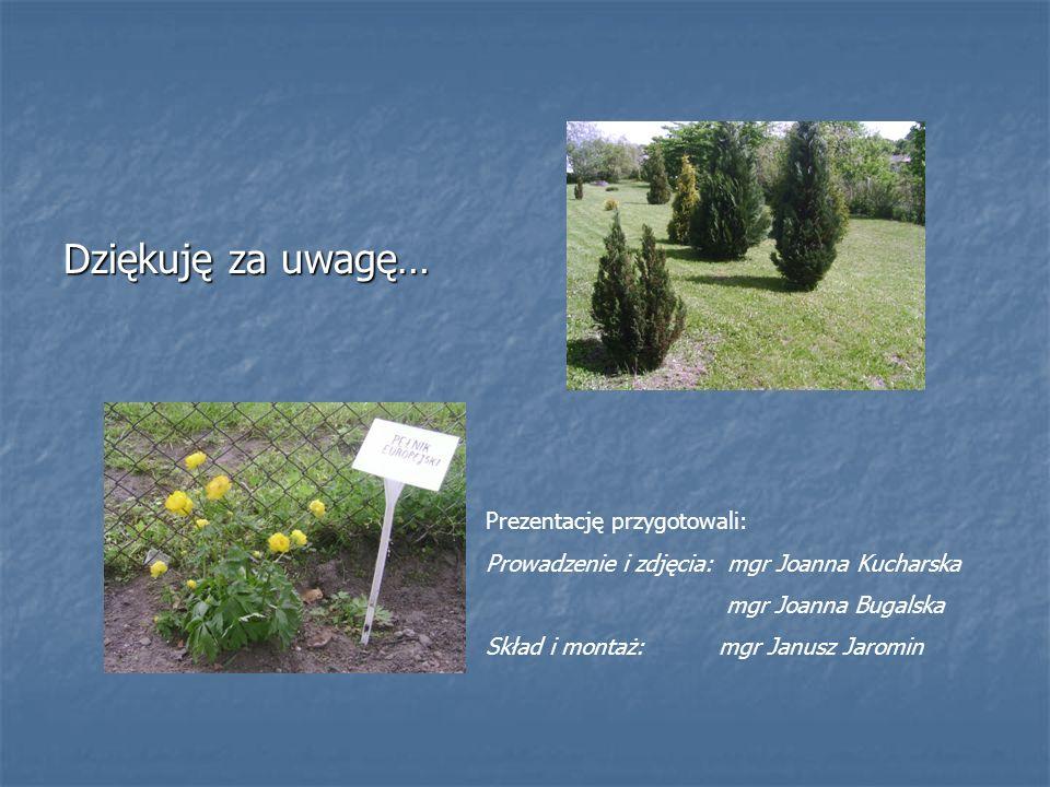 Dziękuję za uwagę… Prezentację przygotowali: Prowadzenie i zdjęcia: mgr Joanna Kucharska mgr Joanna Bugalska Skład i montaż: mgr Janusz Jaromin