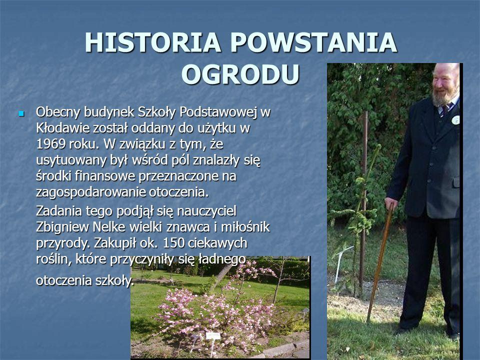 HISTORIA POWSTANIA OGRODU Obecny budynek Szkoły Podstawowej w Kłodawie został oddany do użytku w 1969 roku.