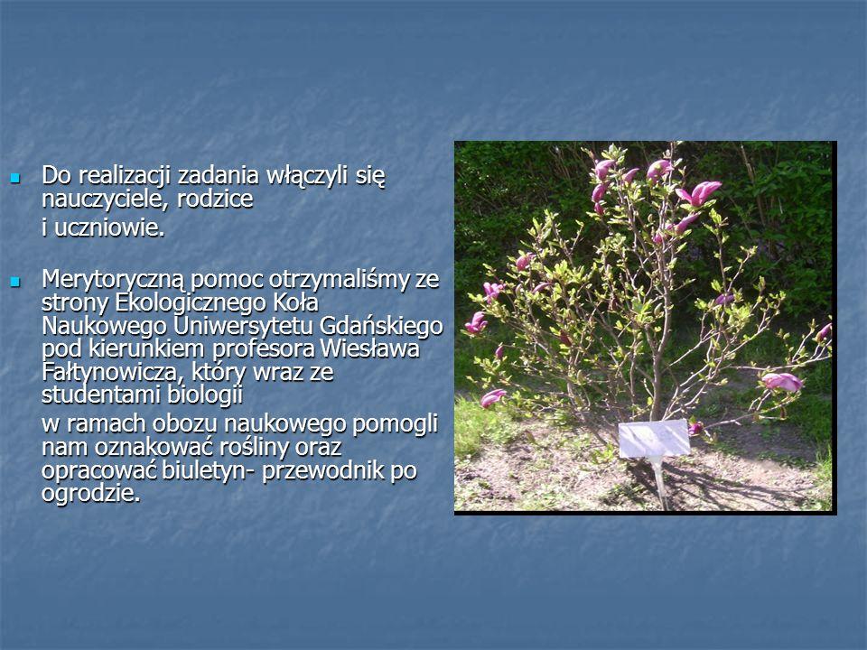 W przyszkolnym ogrodzie botanicznym W przyszkolnym ogrodzie botanicznym zgromadzonych zostało przeszło 250 gatunków drzew, krzewów i roślin zielnych.