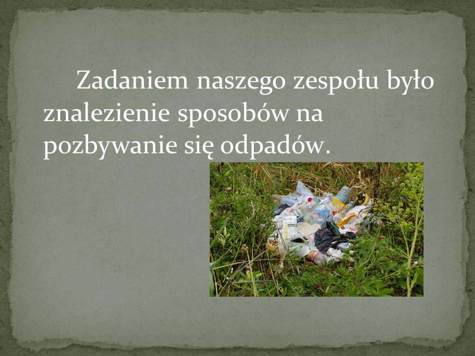 Zadaniem naszego zespołu było znalezienie sposobów na pozbywanie się odpadów.