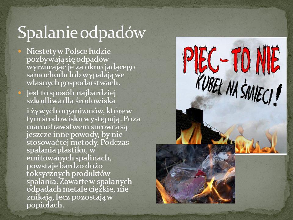 Niestety w Polsce ludzie pozbywają się odpadów wyrzucając je za okno jadącego samochodu lub wypalają we własnych gospodarstwach. Jest to sposób najbar