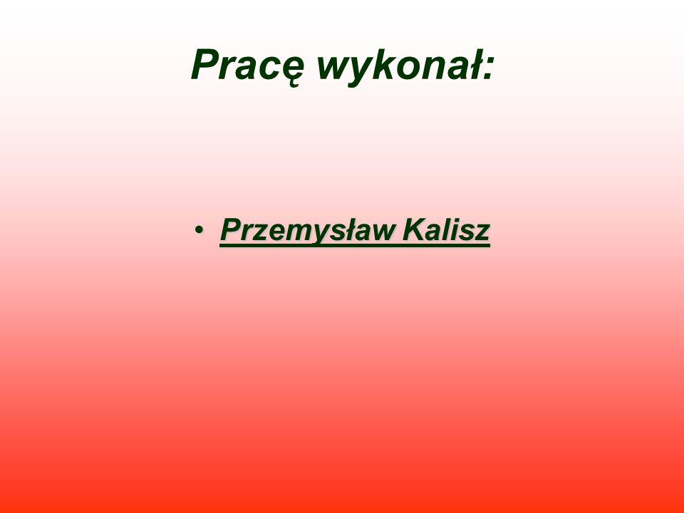 Pracę wykonał: Przemysław KaliszPrzemysław Kalisz