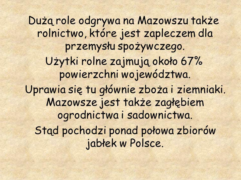 Dużą role odgrywa na Mazowszu także rolnictwo, które jest zapleczem dla przemysłu spożywczego. Użytki rolne zajmują około 67% powierzchni województwa.