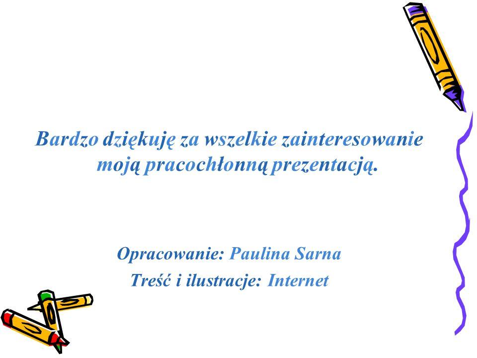 Bardzo dziękuję za wszelkie zainteresowanie moją pracochłonną prezentacją. Opracowanie: Paulina Sarna Treść i ilustracje: Internet