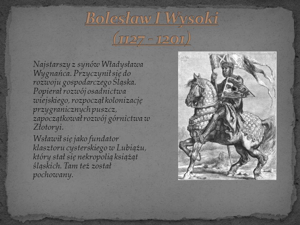 Najstarszy z synów Władysława Wygnańca. Przyczynił się do rozwoju gospodarczego Śląska. Popierał rozwój osadnictwa wiejskiego, rozpoczął kolonizację p