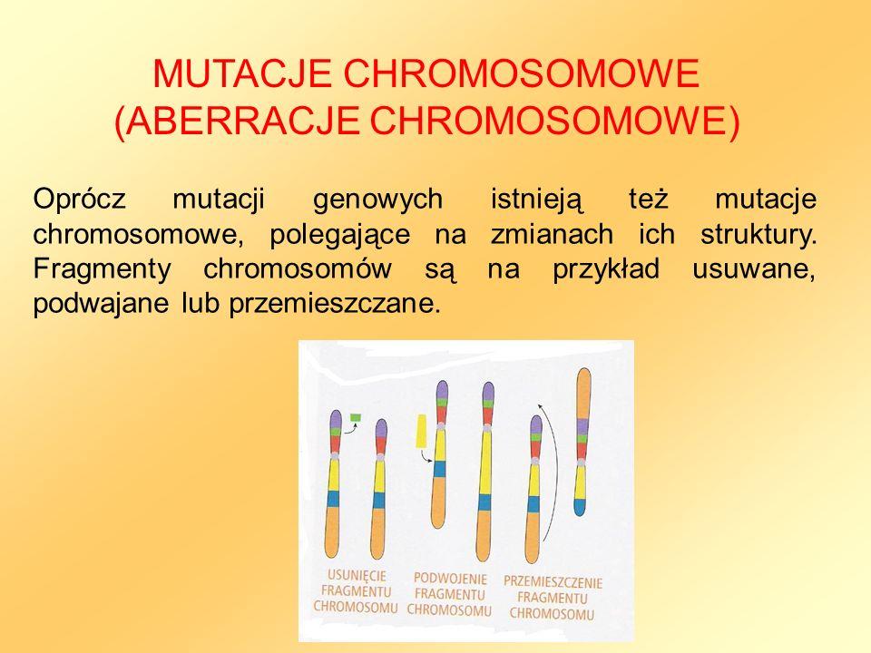 Oprócz mutacji genowych istnieją też mutacje chromosomowe, polegające na zmianach ich struktury. Fragmenty chromosomów są na przykład usuwane, podwaja