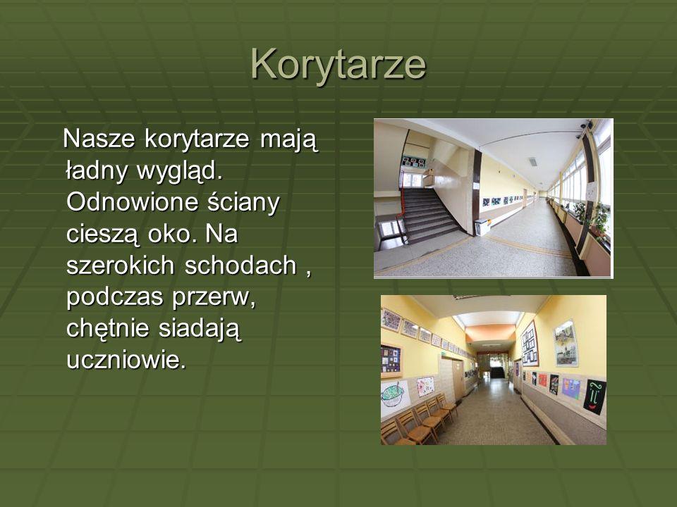 Korytarze Nasze korytarze mają ładny wygląd. Odnowione ściany cieszą oko. Na szerokich schodach, podczas przerw, chętnie siadają uczniowie. Nasze kory