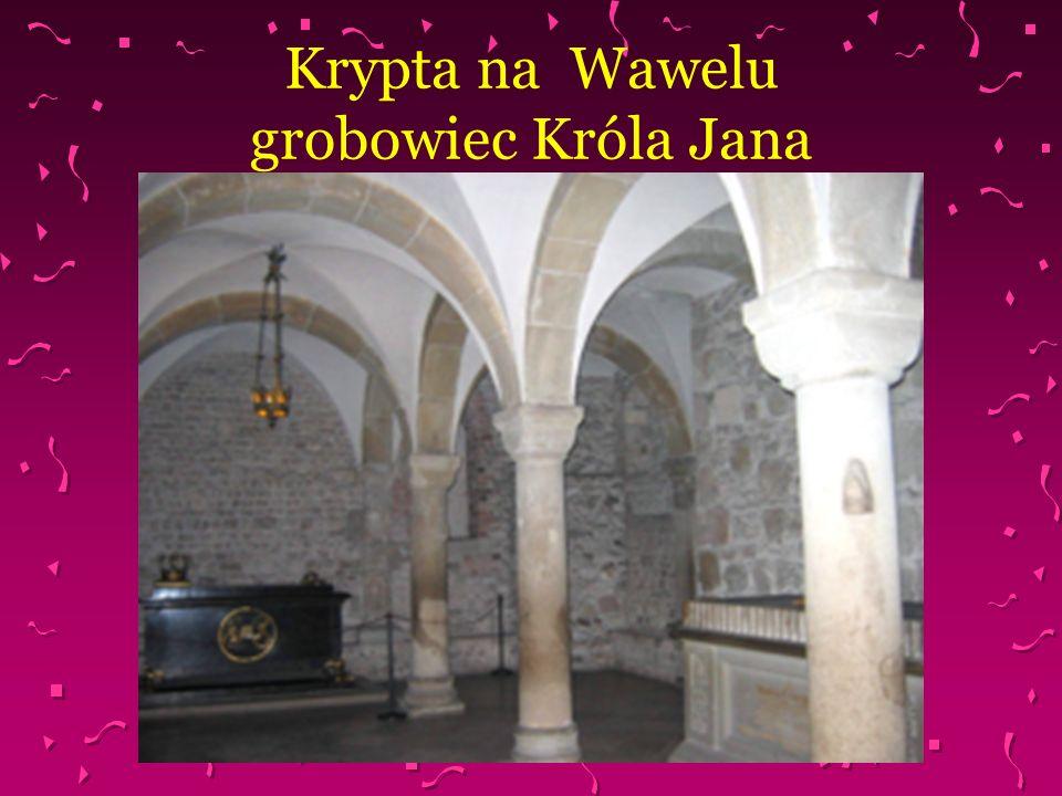 Krypta na Wawelu grobowiec Króla Jana