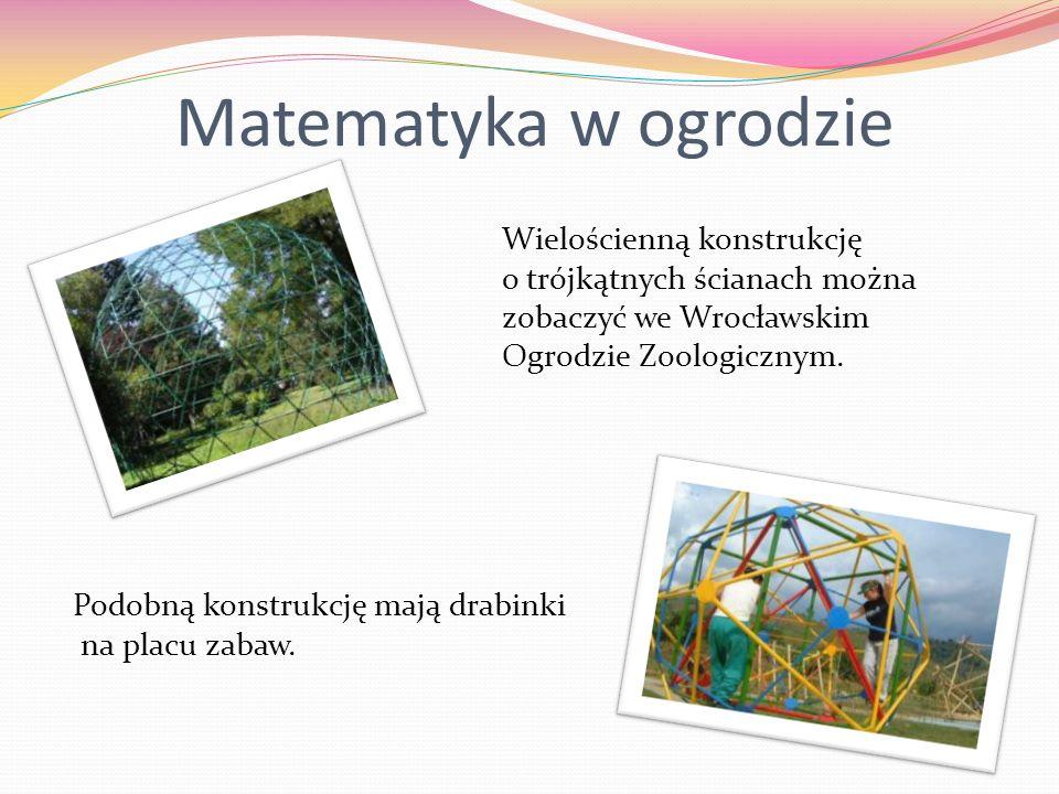 Matematyka w ogrodzie Wielościenną konstrukcję o trójkątnych ścianach można zobaczyć we Wrocławskim Ogrodzie Zoologicznym. Podobną konstrukcję mają dr