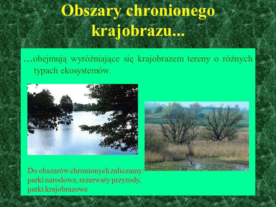 Obszary chronionego krajobrazu......