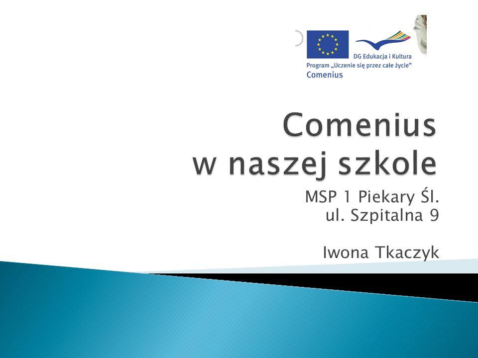 Rok temu skończyliśmy projekt, który realizowaliśmy z Węgrami, Wielką Brytanią, Włochami, Turcją.