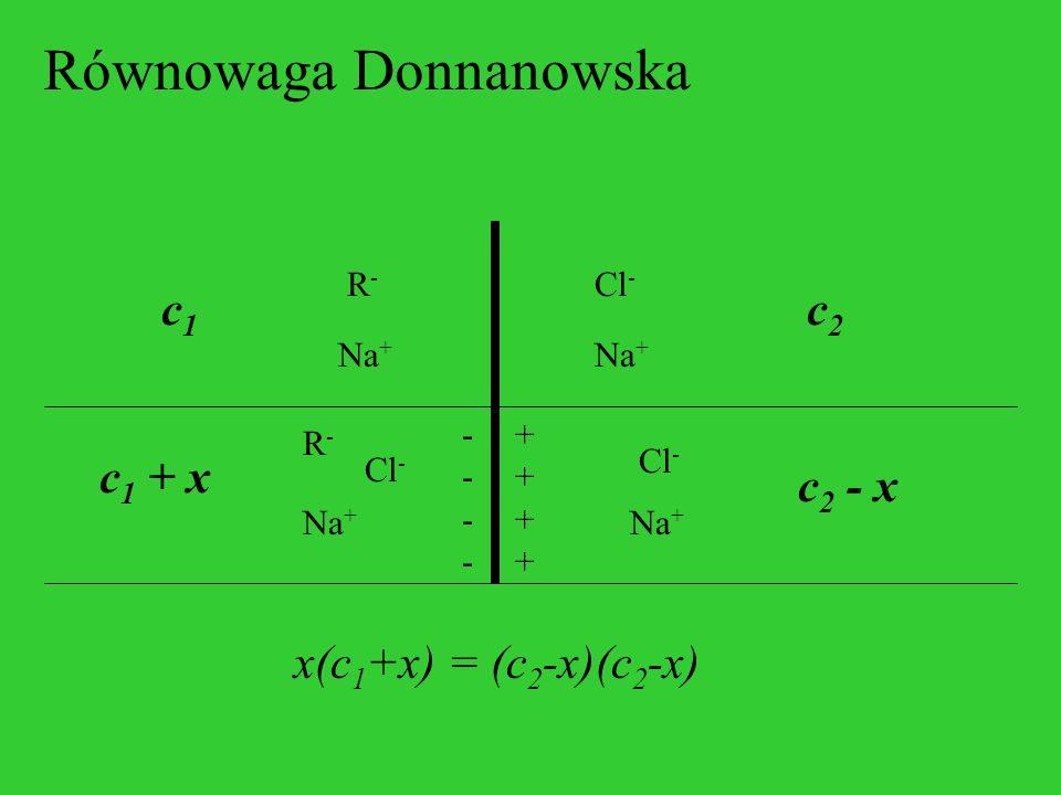 Równowaga Donnanowska R-R- Na + Cl - c1c1 c2c2 R-R- Na + Cl - c 1 + x c 2 - x -------- ++++++++ x(c 1 +x) = (c 2 -x)(c 2 -x)