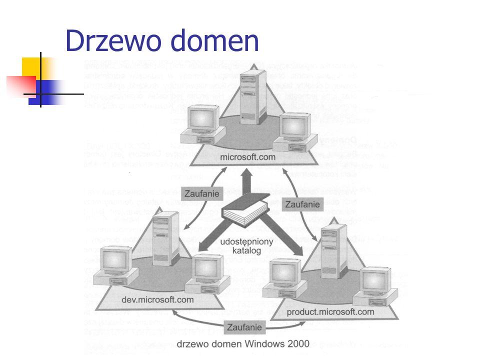 Drzewo domen