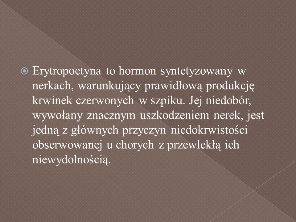 Erytropoetyna to hormon syntetyzowany w nerkach, warunkujący prawidłową produkcję krwinek czerwonych w szpiku. Jej niedobór, wywołany znacznym uszkodz