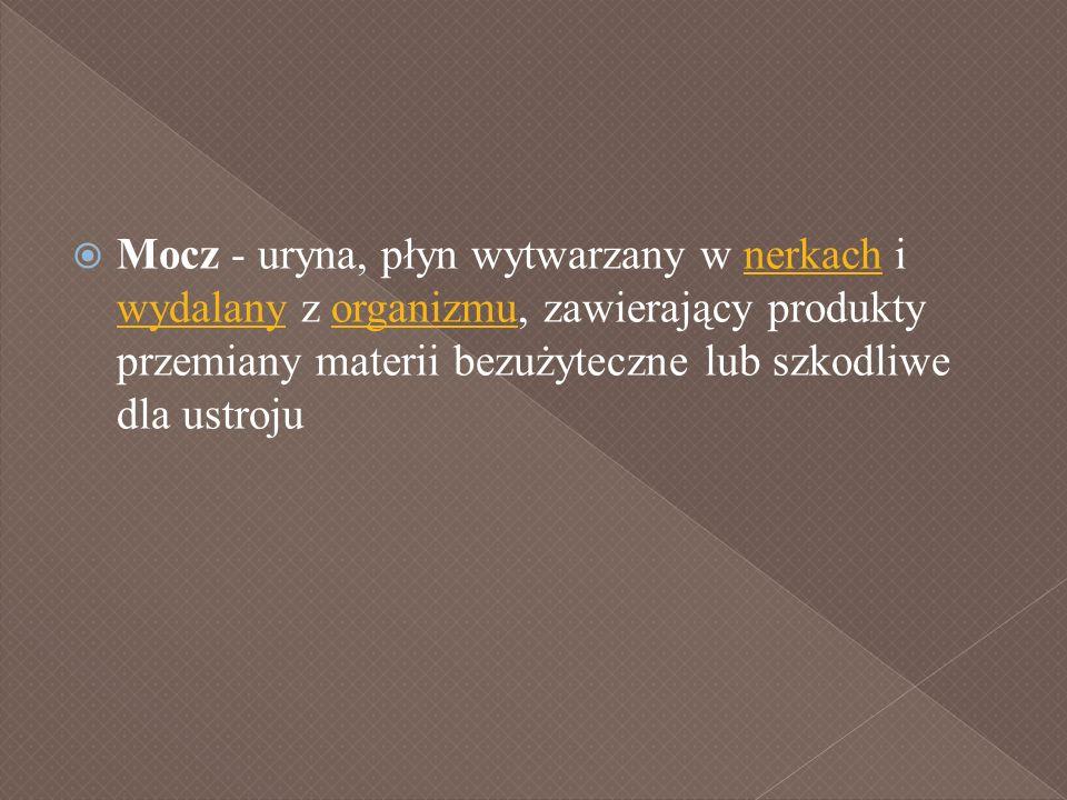 Mocz - uryna, płyn wytwarzany w nerkach i wydalany z organizmu, zawierający produkty przemiany materii bezużyteczne lub szkodliwe dla ustrojunerkach w