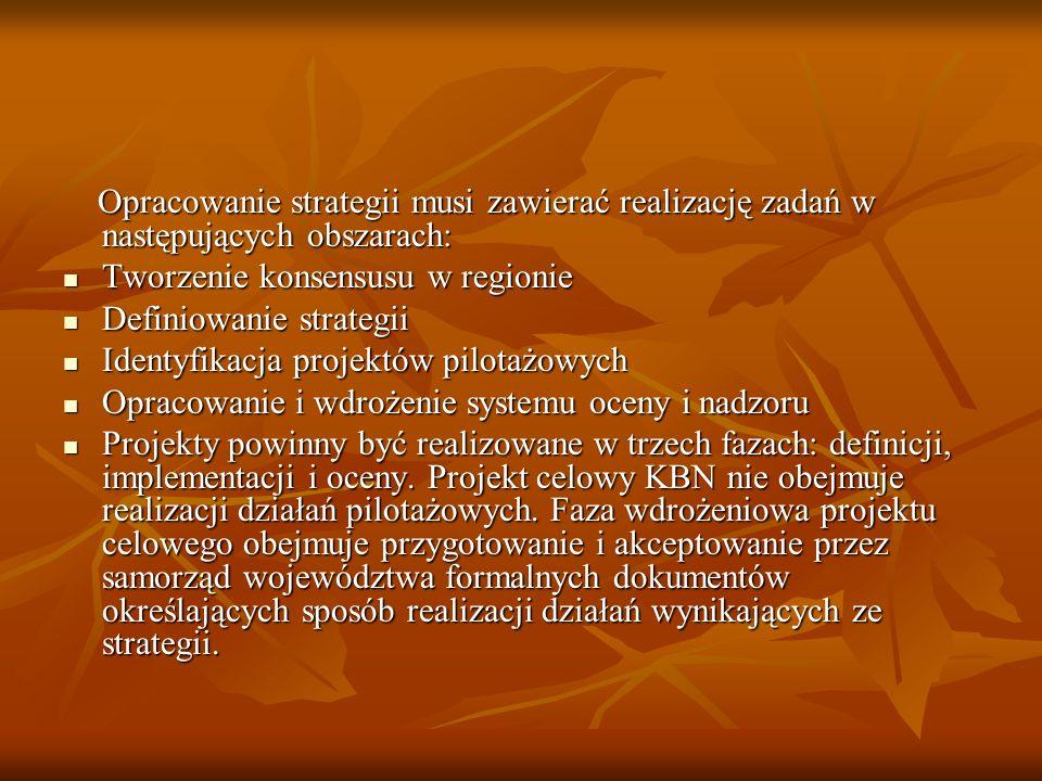 Opracowanie strategii musi zawierać realizację zadań w następujących obszarach: Opracowanie strategii musi zawierać realizację zadań w następujących o