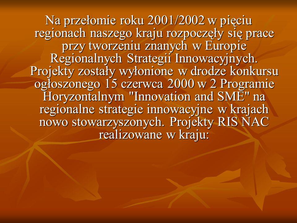 Na przełomie roku 2001/2002 w pięciu regionach naszego kraju rozpoczęły się prace przy tworzeniu znanych w Europie Regionalnych Strategii Innowacyjnyc