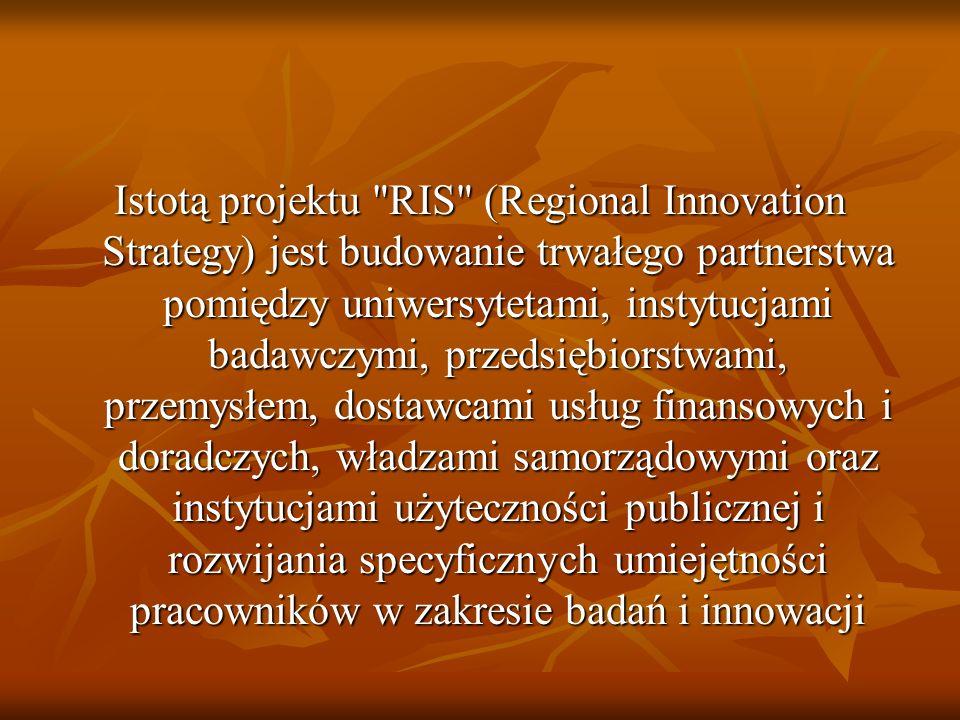 Regionalne strategie innowacji są zwłaszcza istotne dla najsłabiej rozwiniętych regionów, które aby wyrównać różnice z lepiej rozwiniętymi muszą stawiać na innowacyjne i najbardziej rozwojowe (perspektywiczne) sektory gospodarcze regionu