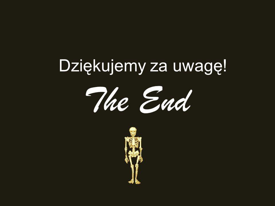 The End Dziękujemy za uwagę!