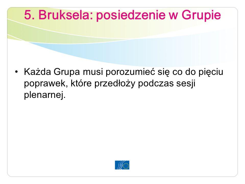 5. Bruksela: posiedzenie w Grupie Każda Grupa musi porozumieć się co do pięciu poprawek, które przedłoży podczas sesji plenarnej.