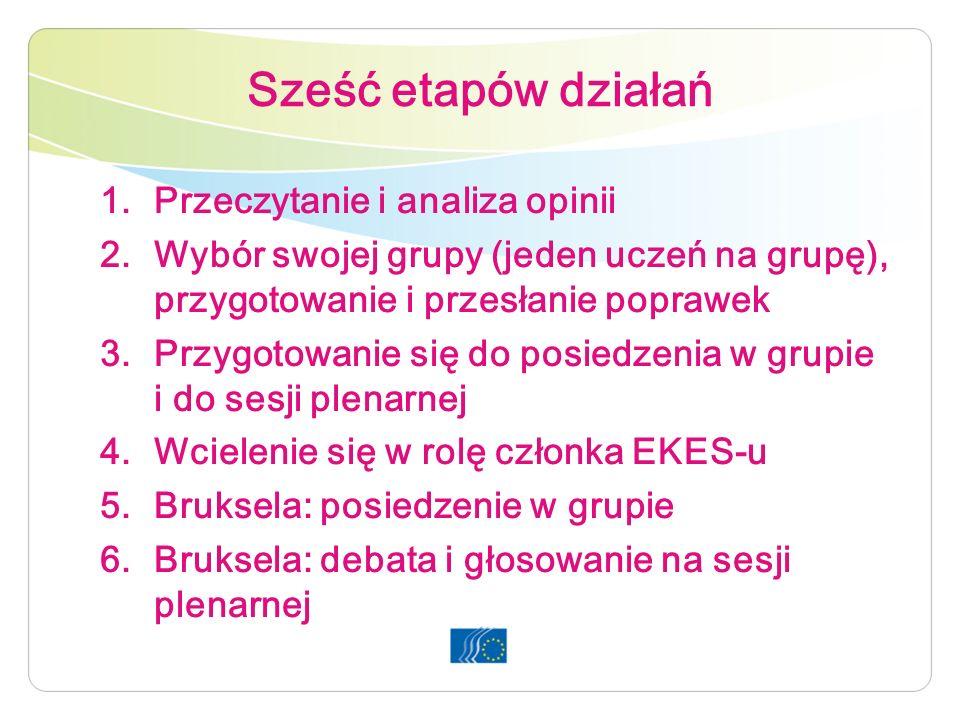 Sześć etapów działań 1.Przeczytanie i analiza opinii 2.Wybór swojej grupy (jeden uczeń na grupę), przygotowanie i przesłanie poprawek 3.Przygotowanie się do posiedzenia w grupie i do sesji plenarnej 4.Wcielenie się w rolę członka EKES-u 5.Bruksela: posiedzenie w grupie 6.Bruksela: debata i głosowanie na sesji plenarnej