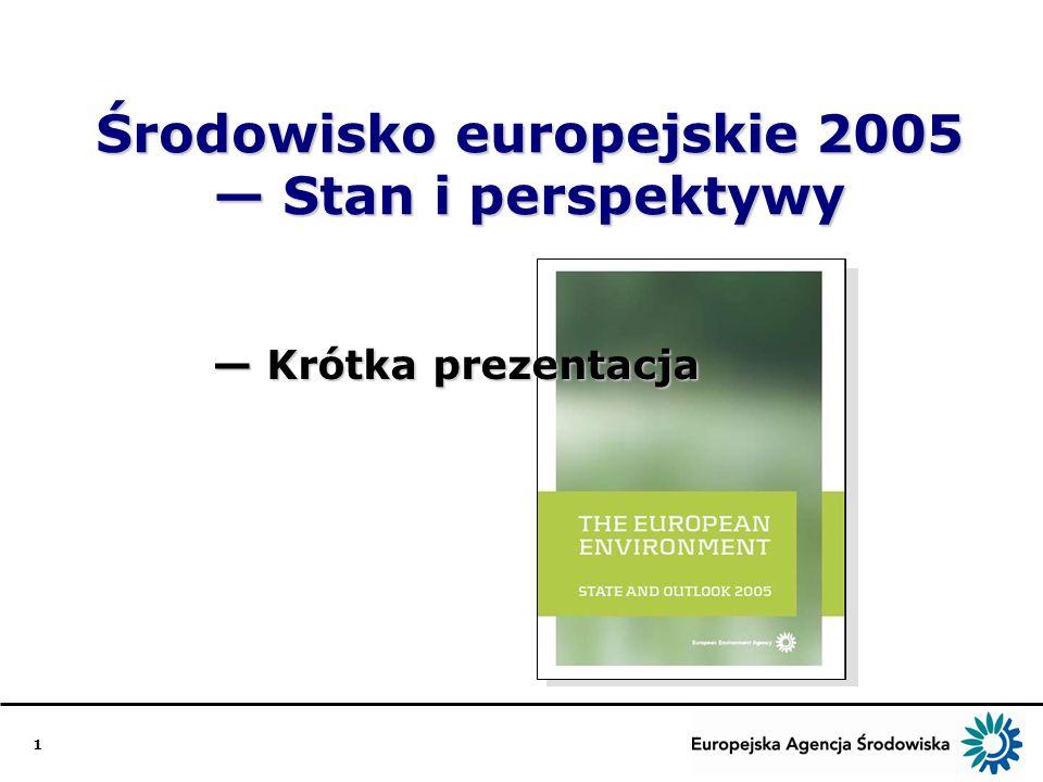 1 Środowisko europejskie 2005 Stan i perspektywy Krótka prezentacja Krótka prezentacja