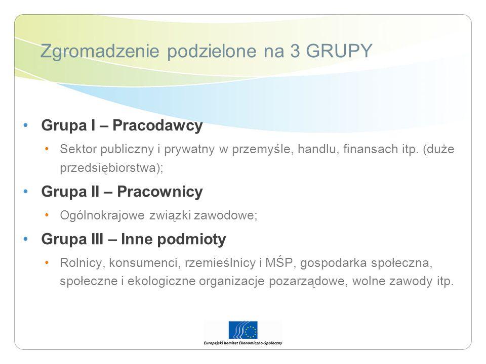 Zgromadzenie podzielone na 3 GRUPY Grupa I – Pracodawcy Sektor publiczny i prywatny w przemyśle, handlu, finansach itp. (duże przedsiębiorstwa); Grupa