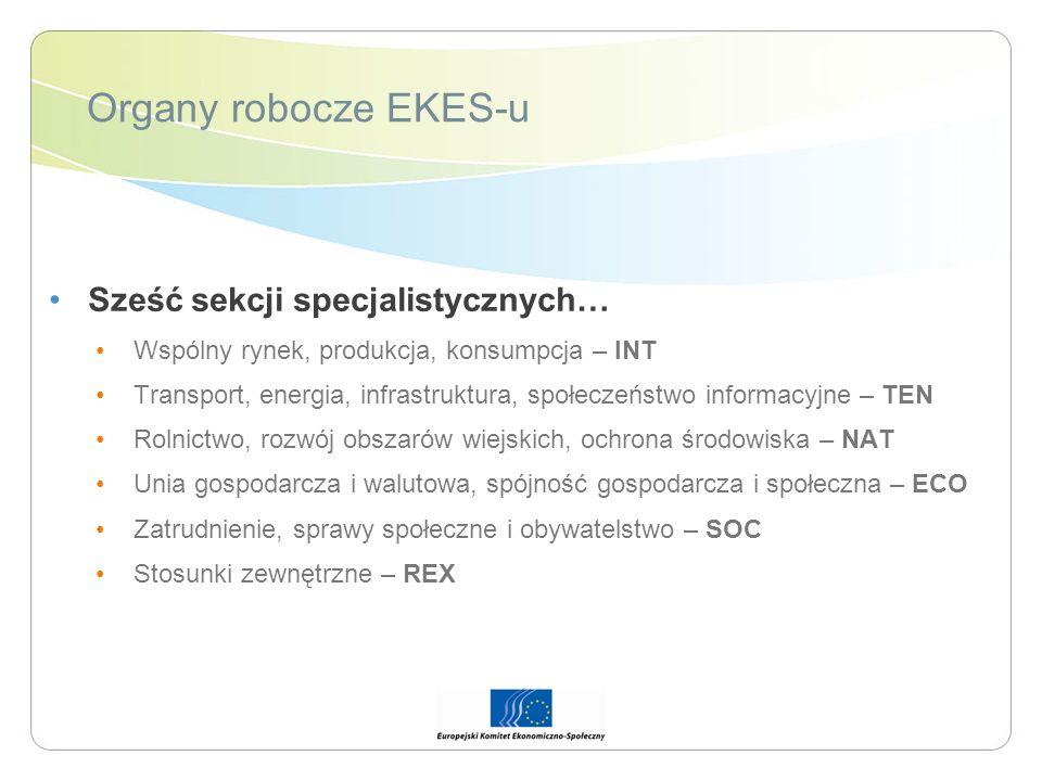 Organy robocze EKES-u Sześć sekcji specjalistycznych… Wspólny rynek, produkcja, konsumpcja – INT Transport, energia, infrastruktura, społeczeństwo inf