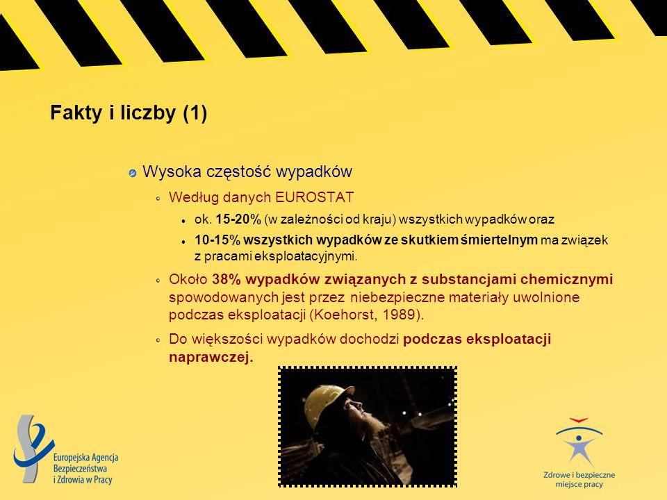 Fakty i liczby (1) Wysoka częstość wypadków Według danych EUROSTAT ok. 15-20% (w zależności od kraju) wszystkich wypadków oraz 10-15% wszystkich wypad