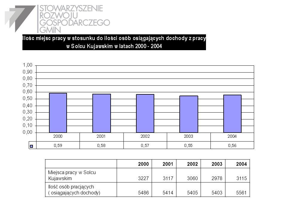 20002001200220032004 Miejsca pracy w Solcu Kujawskim32273117306029783115 Ilość osób pracjących ( osiągających dochody)54865414540554035561