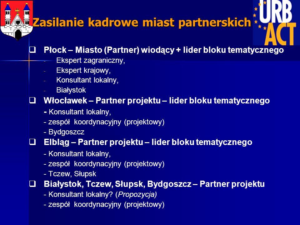 Płock – Miasto (Partner) wiodący + lider bloku tematycznego - - Ekspert zagraniczny, - - Ekspert krajowy, - - Konsultant lokalny, - - Białystok Włocławek – Partner projektu – lider bloku tematycznego - Konsultant lokalny, - zespół koordynacyjny (projektowy) - Bydgoszcz Elbląg – Partner projektu – lider bloku tematycznego - Konsultant lokalny, - zespół koordynacyjny (projektowy) - Tczew, Słupsk Białystok, Tczew, Słupsk, Bydgoszcz – Partner projektu - Konsultant lokalny.