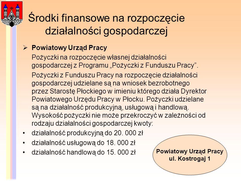 Środki finansowe na rozpoczęcie działalności gospodarczej Powiatowy Urząd Pracy Pożyczki na rozpoczęcie własnej działalności gospodarczej z Programu P
