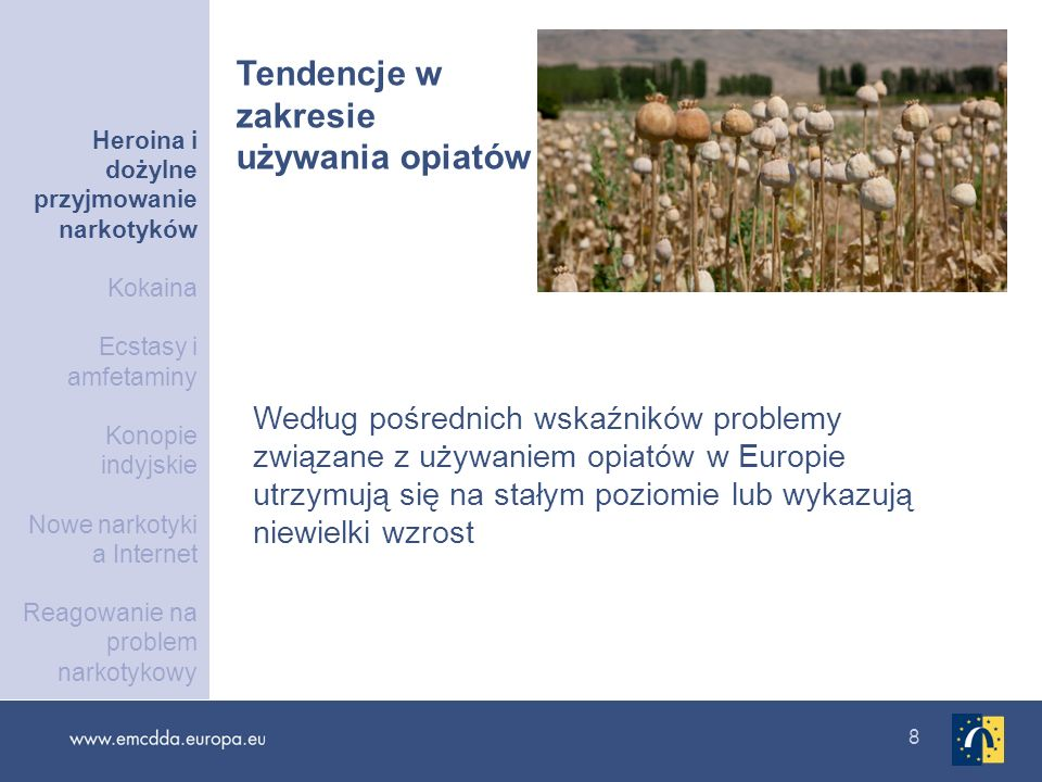 8 Według pośrednich wskaźników problemy związane z używaniem opiatów w Europie utrzymują się na stałym poziomie lub wykazują niewielki wzrost Tendencj