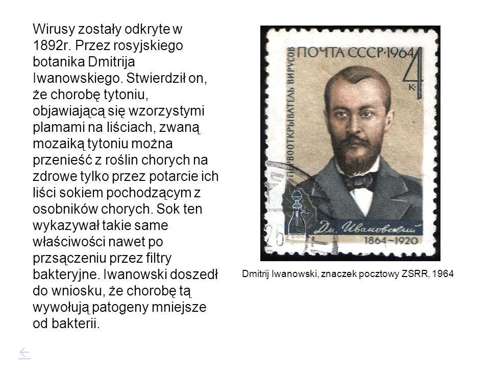 Wirusy zostały odkryte w 1892r. Przez rosyjskiego botanika Dmitrija Iwanowskiego. Stwierdził on, że chorobę tytoniu, objawiającą się wzorzystymi plama