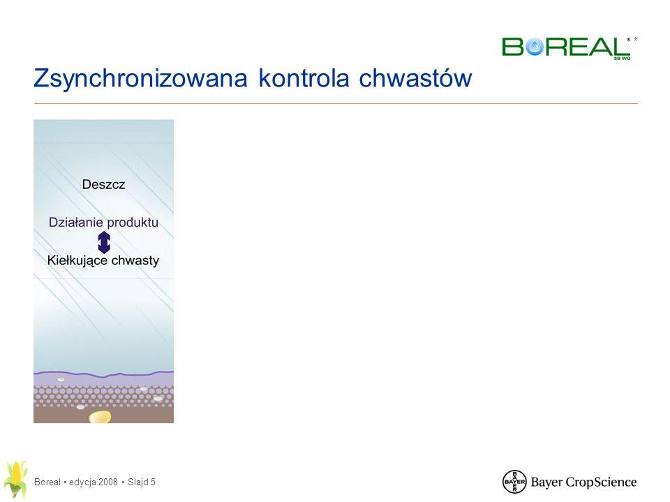 * Boreal edycja 2008 Slajd 6 Zawiera dwie uzupełniające się substancje aktywne o różnych mechanizmach działania: 48% flufenacetu (związek z grupy oksyacetamidów); 10% isoksaflutolu (związek z grupy izoksazoli).
