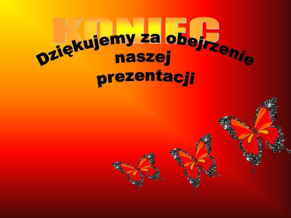 Czerwończyk dukacik (Lycaena virgaureae) Gatunek w całym kraju bardzo pospolity. Motyle dorosłe spotyka się na skrajach lasów, śródleśnych polanach i