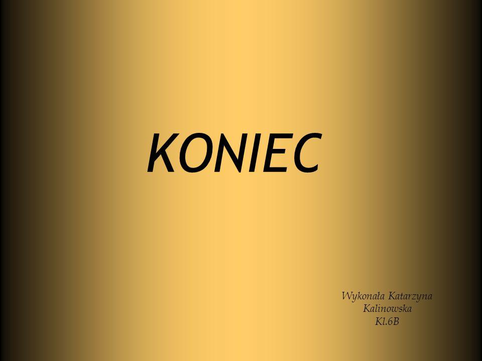 KONIEC Wykonała Katarzyna Kalinowska Kl.6B