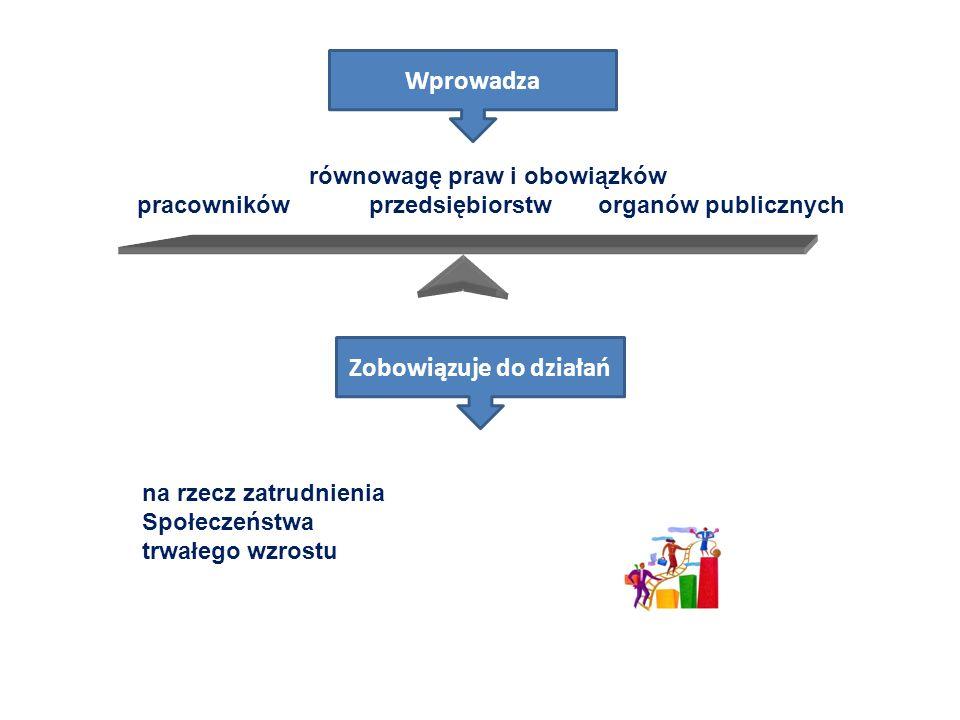 Wspólne zasady wdrażania modelu flexicurity dla osiągnięcia równowagi między elastycznością i bezpieczeństwem na rynku pracy konieczne jest spełnienie czterech warunków, które nazywa się również elementami pojęcia flexicurity: elastyczne i przewidywalne warunki umów (z perspektywy pracownika i pracodawcy, a także osób posiadających i nieposiadających stałego zatrudnienia) osiągane dzięki nowoczesnemu prawu pracy, układom zbiorowym i organizacji pracy kompleksowe strategie uczenia się przez całe życie (LLL- Lifelong Learning ), skuteczna aktywna polityka rynku pracy (ALMP - Active Labour Market Policy ) nowoczesne systemy zabezpieczenia socjalnego