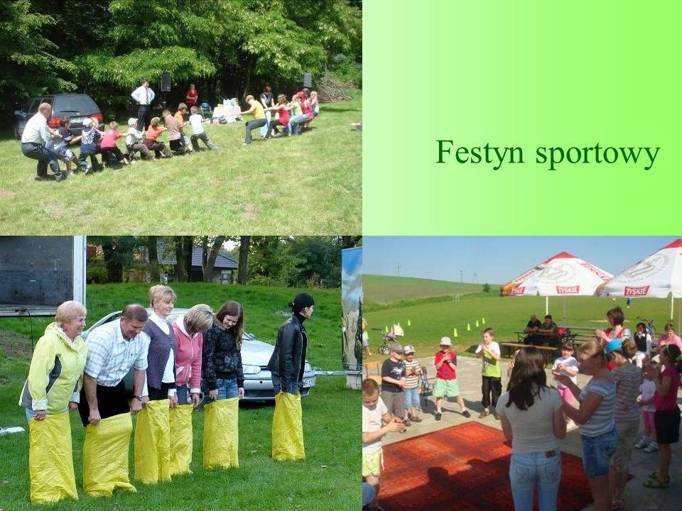 Festyn sportowy