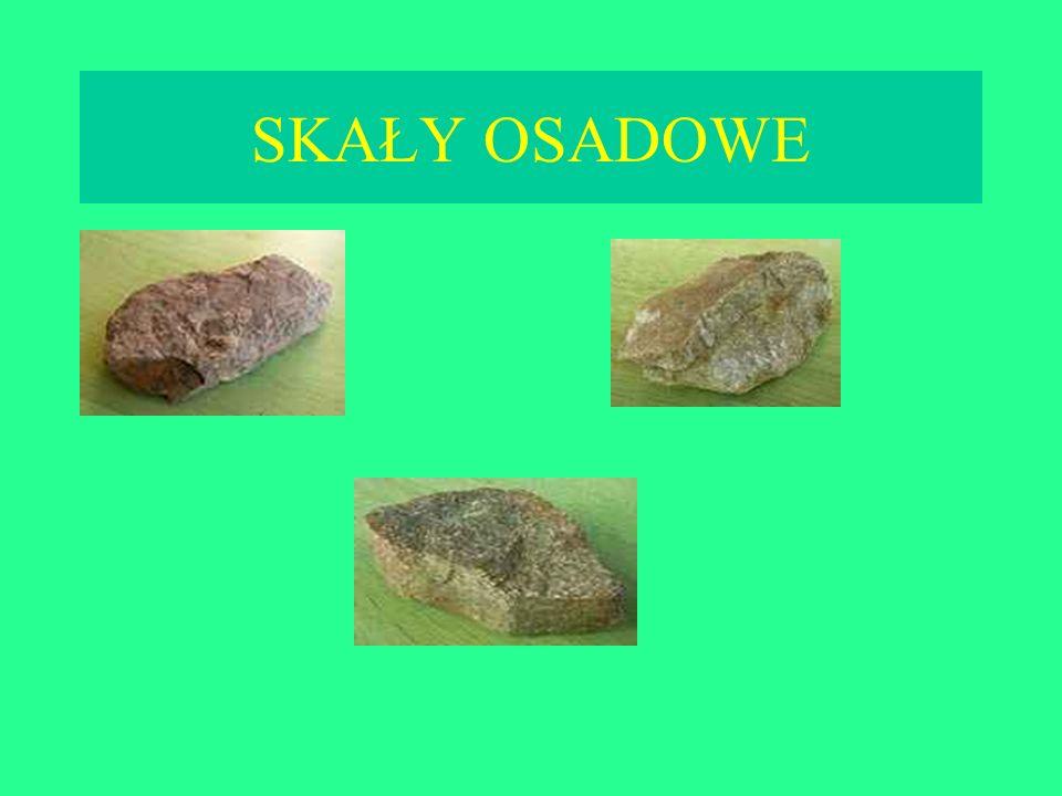 Skała wyjściowaSkała metamorficzna GranitGnejs WapieńMarmur Skały ilasteŁupki metamorficzne Piaskowce Kwarcyty Różne skały osadoweZieleńce