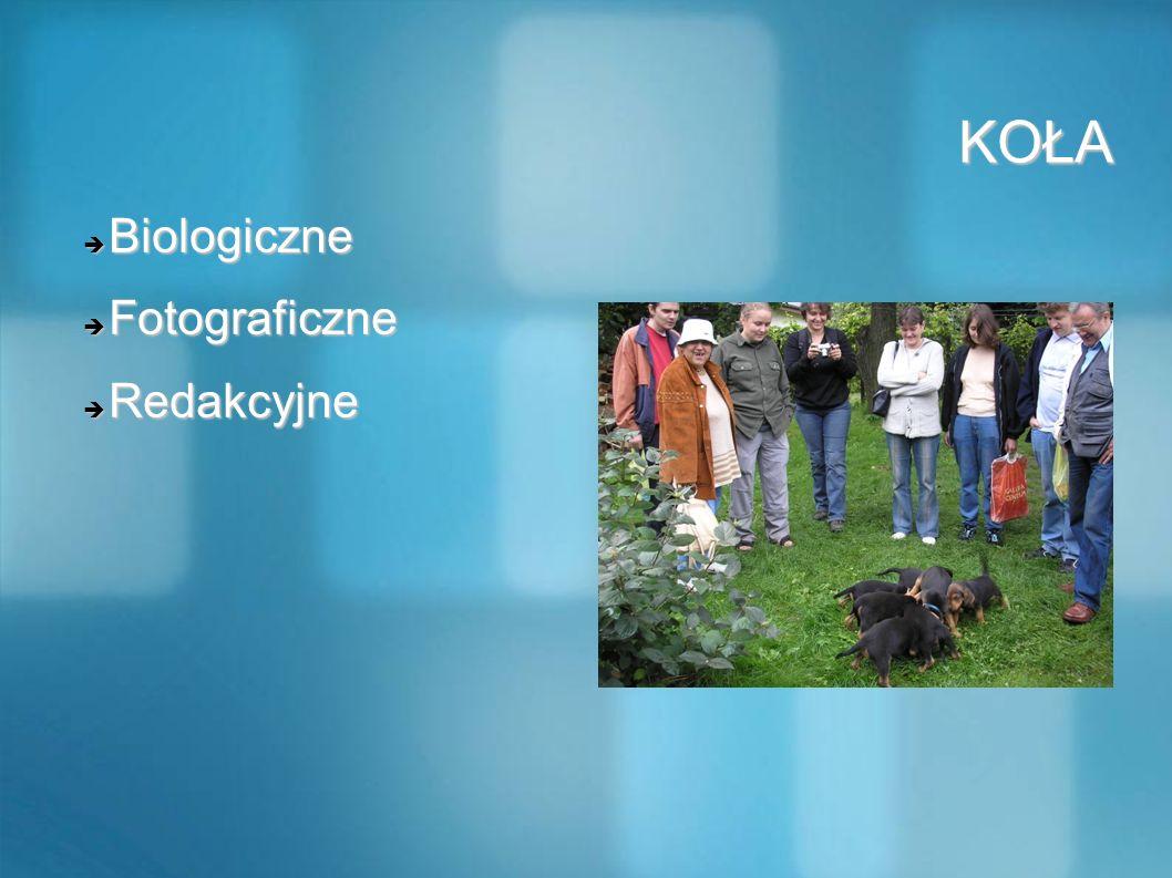 KOŁA KOŁA Biologiczne Biologiczne Fotograficzne Fotograficzne Redakcyjne Redakcyjne