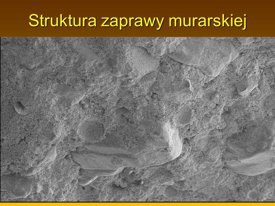 Struktura zaprawy murarskiej struktura nr 1