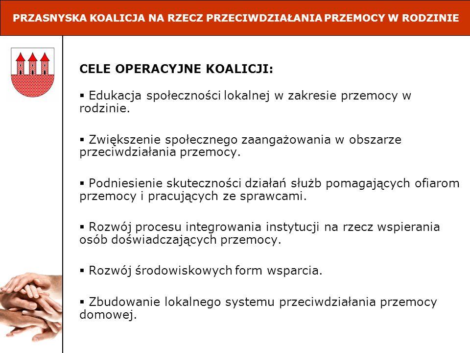 REALIZACJA DZIAŁAŃ W LATACH 2005-2008 Czerwiec 2005 – trzydniowe szkolenie w Przasnyszu pn.