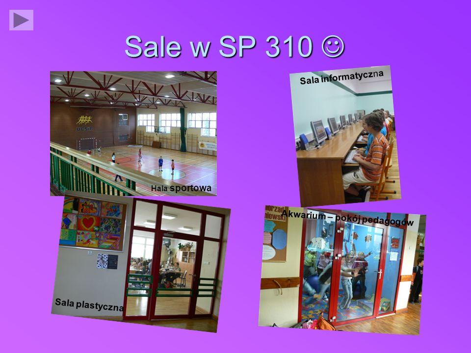 Sale w SP 310 Sale w SP 310 Hala sportowa Sala informatyczna Sala plastyczna Akwarium – pokój pedagogów