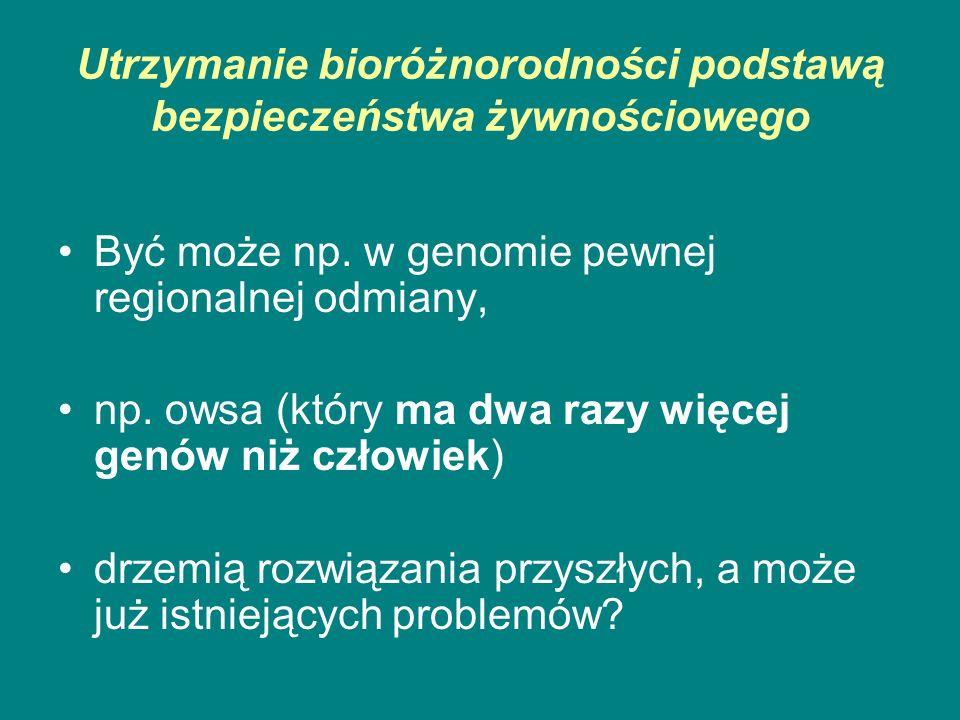 Utrzymanie bioróżnorodności podstawą bezpieczeństwa żywnościowego Być może np. w genomie pewnej regionalnej odmiany, np. owsa (który ma dwa razy więce