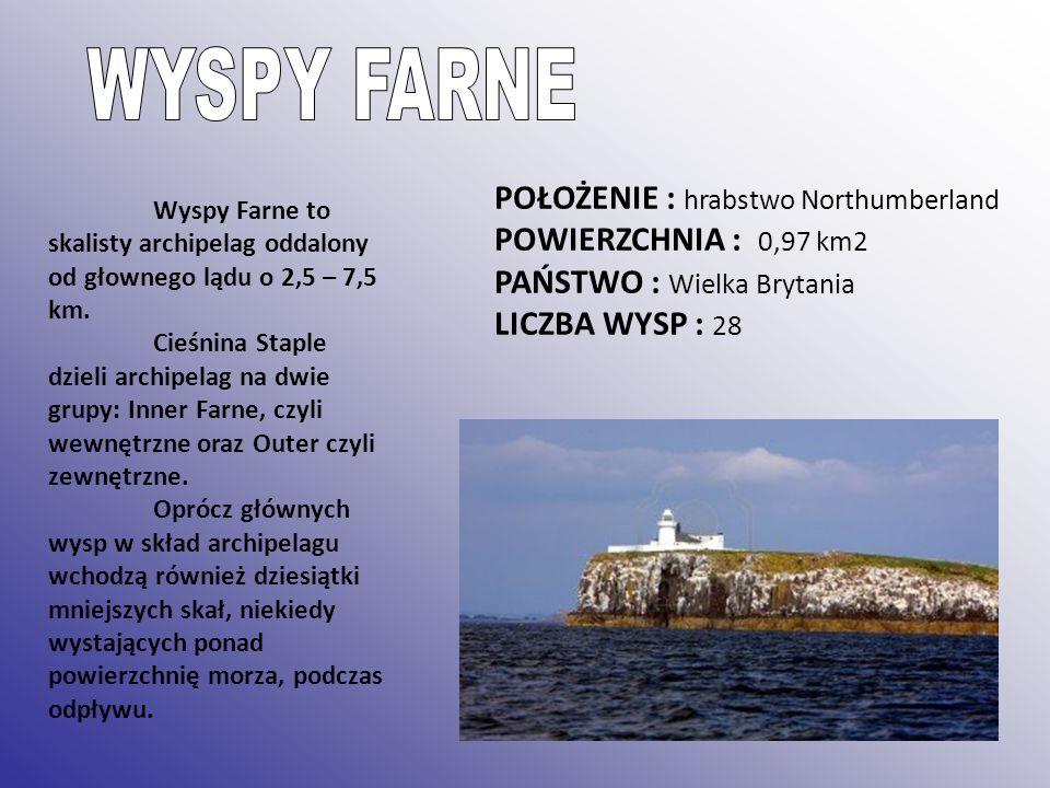 POŁOŻENIE : hrabstwo Northumberland POWIERZCHNIA : 0,97 km2 PAŃSTWO : Wielka Brytania LICZBA WYSP : 28 Wyspy Farne to skalisty archipelag oddalony od