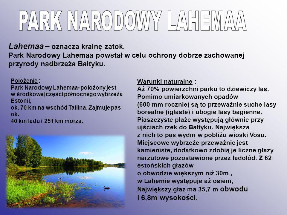 Lahemaa – oznacza krainę zatok. Park Narodowy Lahemaa powstał w celu ochrony dobrze zachowanej przyrody nadbrzeża Bałtyku. Warunki naturalne : Aż 70%